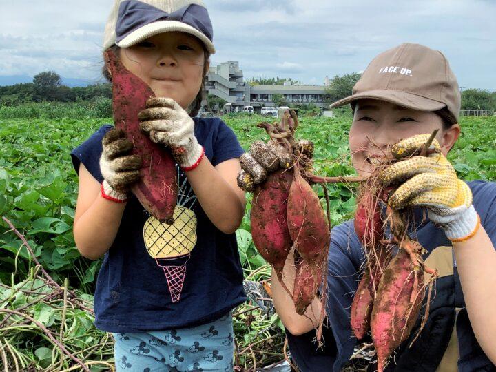 芋掘り体験2021